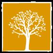 Logo Franciscanos